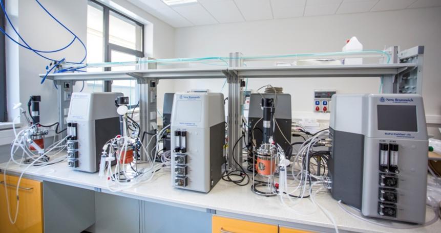 Bioreaktory do hodowli sterylnych (BioFlo 115, New Brunswick Scientific)